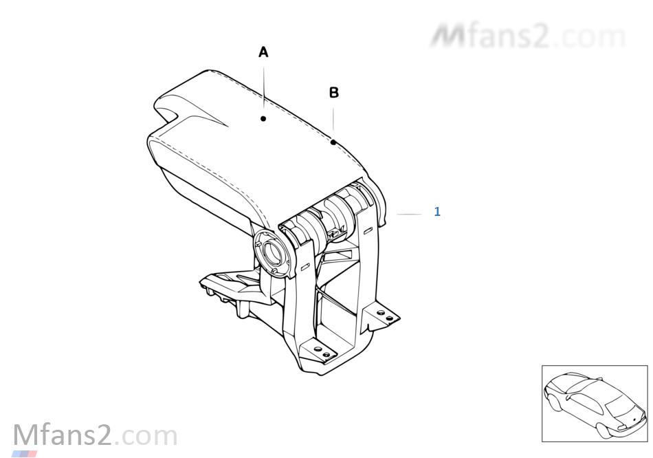 Individual, bracciolo anteriore pelle